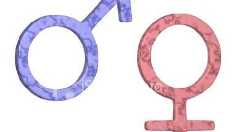 El género: es la designación que se le hace a cuanta cosa existe