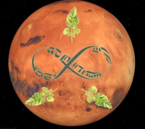 Ad Infinitum: Ungüento de zanahorias hidropónicas en condiciones marcianas como fuente restauradora de vitamina A en la piel expuesta por rayos UV y la contaminación por CO2 de la glorieta Pilsen en el municipio de Itagüí.